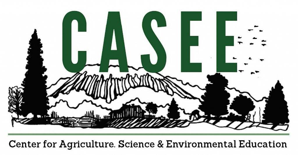 CASEE program mountain sketch